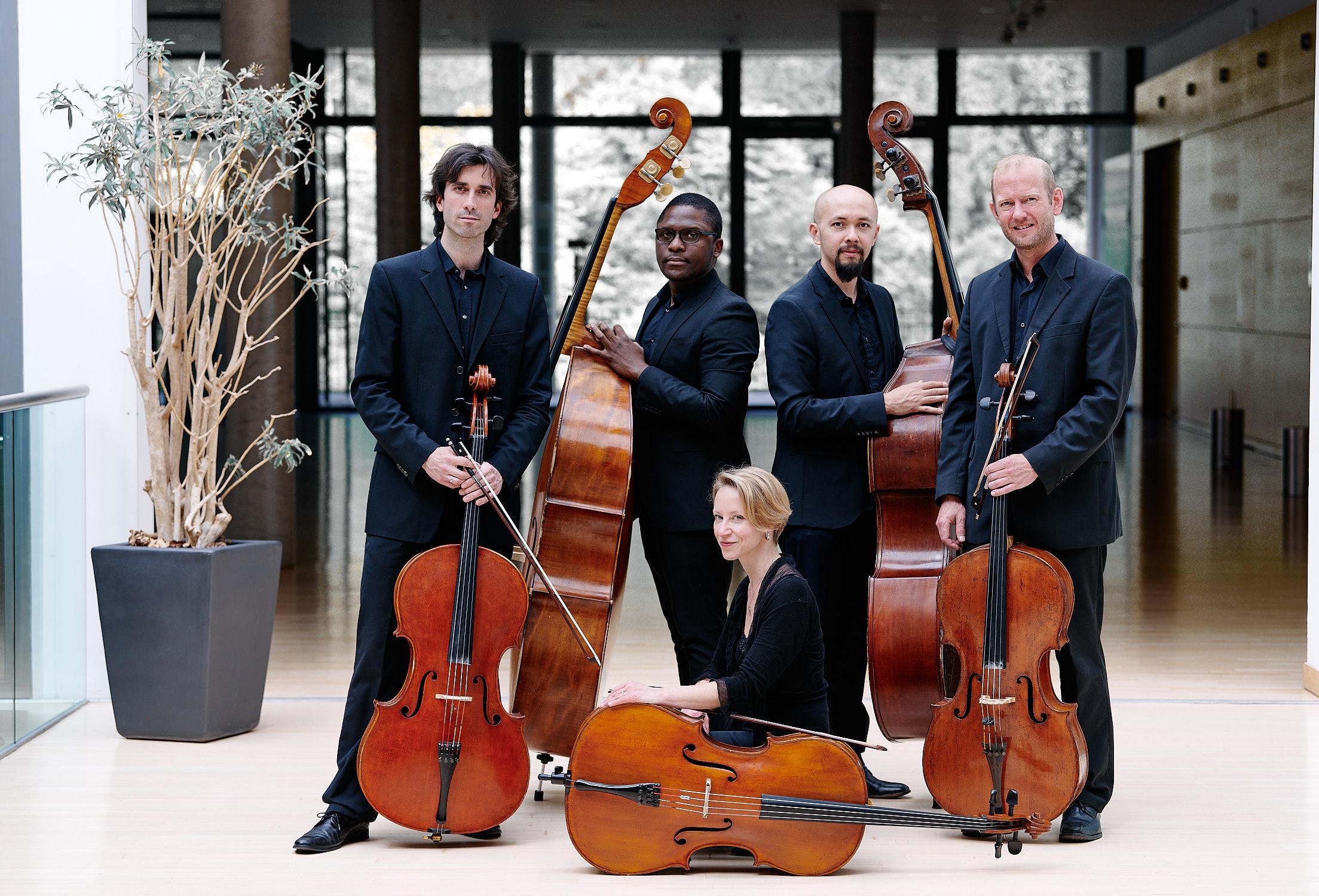 Bassgruppe der Neuen Philharmonie Frankfurt Cello